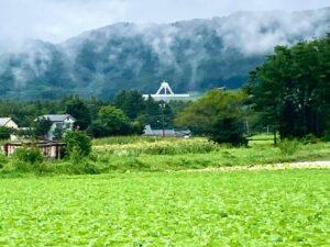 長野県佐久キャラバン