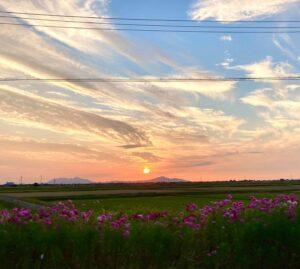 新潟市秋葉区の夕陽